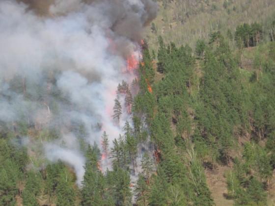 Водном израйонов Прикамья введен режимЧС из-за лесных пожаров