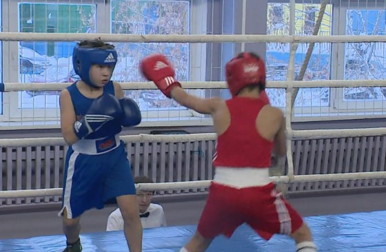 поединок бокс