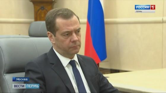 Медведев и Решетников