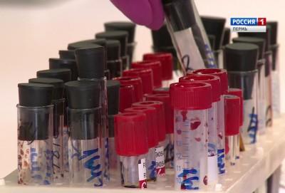 Столичные ученые составят генетический портрет коми-пермяков