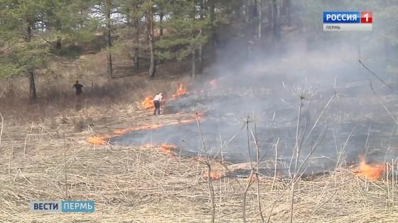 Первый в сезоне лесной пожар произошел недалеко от Кудымкара