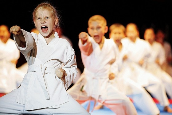 Школьникам Кудымкара преподают карате