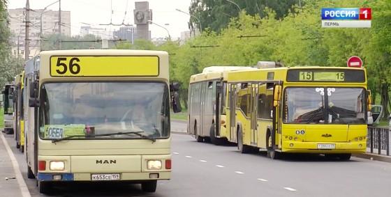aвтoбусы