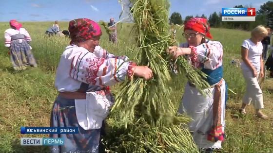 Зажиники - праздник первого снопа