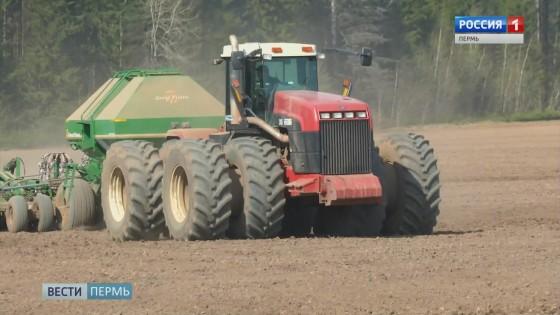 Прикамским аграриям помогут рублем