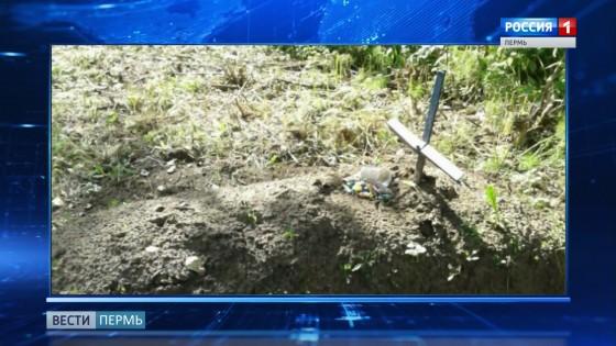 В парке Балатово появилась неизвестная могила