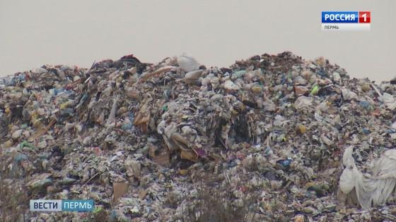 Пермский мусорный оператор взялся за предпринимателей