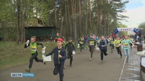 Парк Балатово превратился в полигон для ориентировщиков