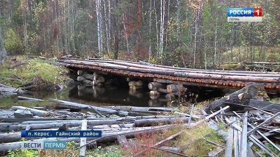 Денег нет, но они держатся: как жители глубинки сами строили мост