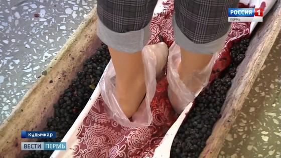 Как коми-пермяки красили одежду ягодами