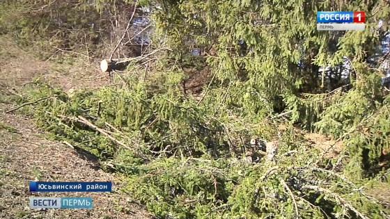 Последствия сильного ветра в Коми-Пермяцком округе