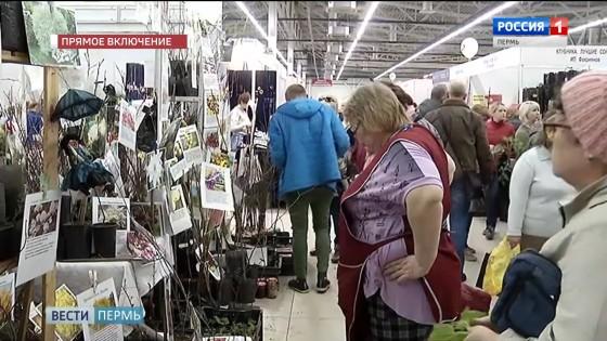 В Перми открылась широкая ярмарка для умных садоводов