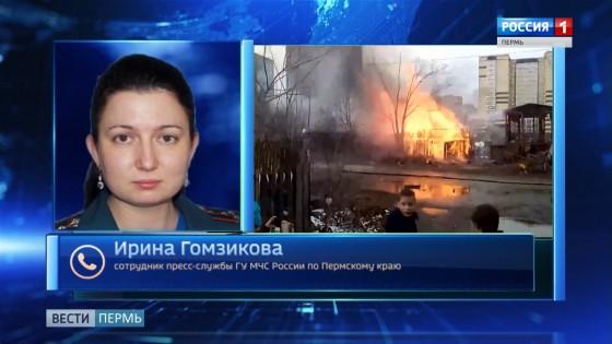 Гомзикова Ирина