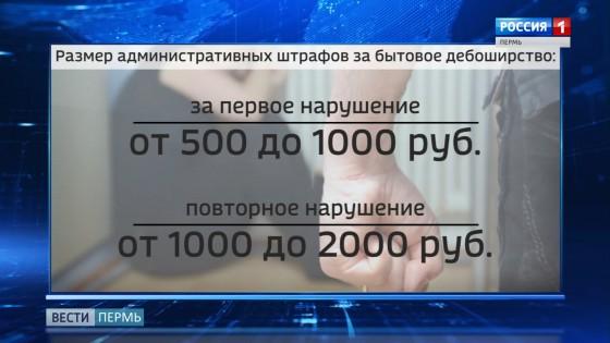 В Прикамье приняли закон о бытовом дебоширстве