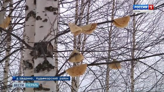 Коми-пермяцкий Новый год: зачем на деревьях развешивали блины?
