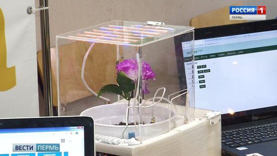 Выставка робототехники в ПГНИУ: следить за цветами через wi-fi, умный загон для животных и другие ноу-хау