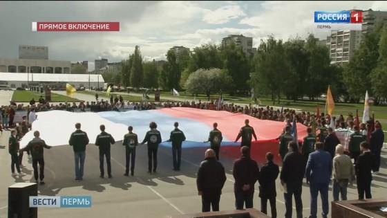 В Перми открылся третий трудовой семестр студенческих отрядов