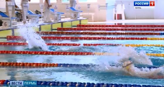 Чемпионат Пермского края по плаванию стартовал сегодня в бассейне СК «Олимпия»