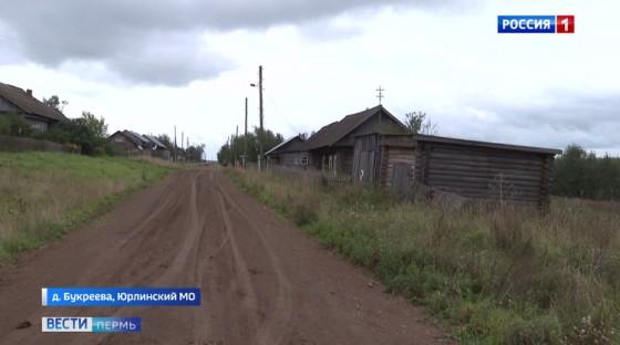 Волки терроризируют деревни Юрлинского округа