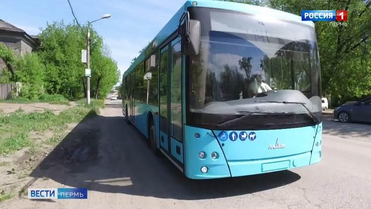 1 июня на городские маршруты выйдут 35 новых автобусов