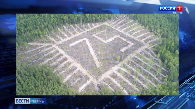 В Кочевском районе высадили геоглиф из 3500 елей