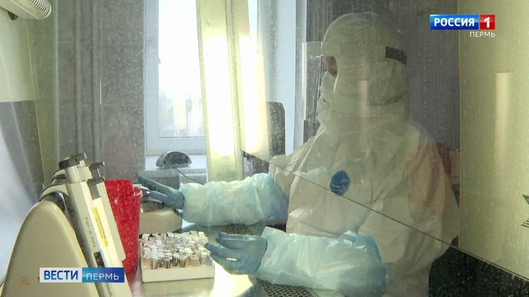 В Пермском крае выявлено 53 новых случая заболевания COVID-19