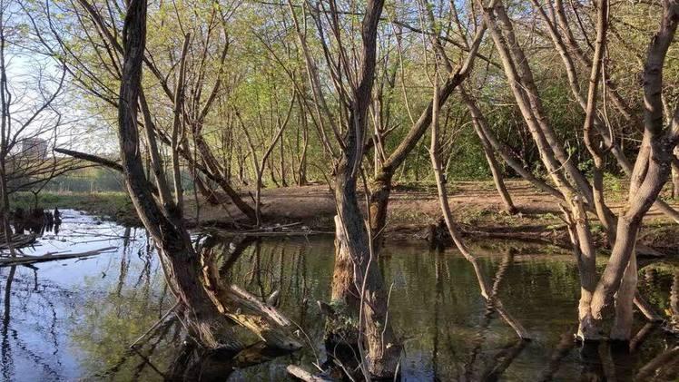 К 300-летию в Перми благоустроят долины малых рек