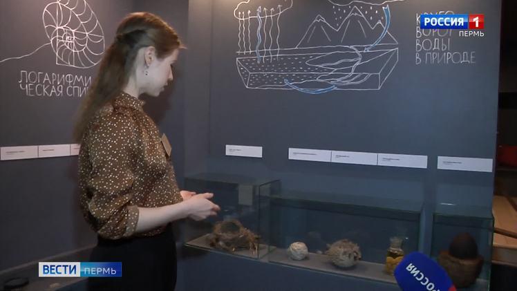 """""""Превращения"""" - новая выставка в Детском музейном центре"""