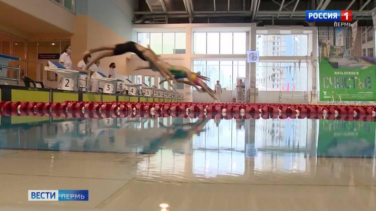 Чемпионат Пермского края по плаванию проходит без зрителей
