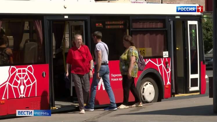 """""""Чтобы не возили воздух"""": чиновники объяснили, почему нужно сократить автобусные маршруты"""