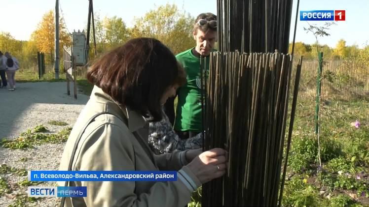 «Сад поэта. Взаимодействие»: во Всеволодо-Вильве представили звучащие арт-объекты