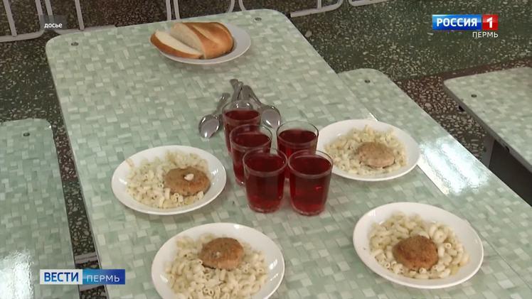 Общественная палата Пермского края оценит организацию бесплатного горячего питания школьников