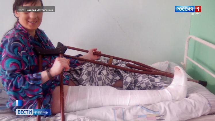 В Кудымкаре не решена проблема бездомных животных