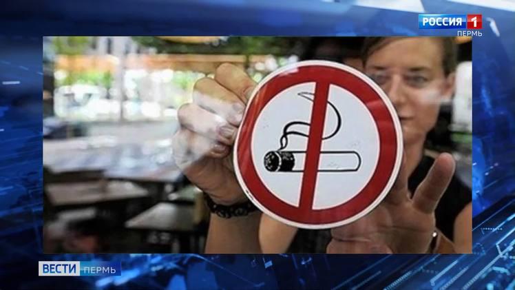 В России запретили курение кальянов в кафе и ресторанах