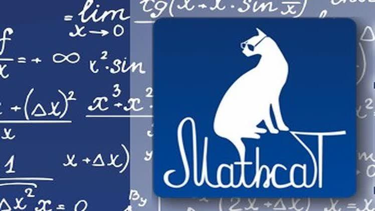 Пермяки присоединятся к Всероссийскому математическому флешмобу MathCat