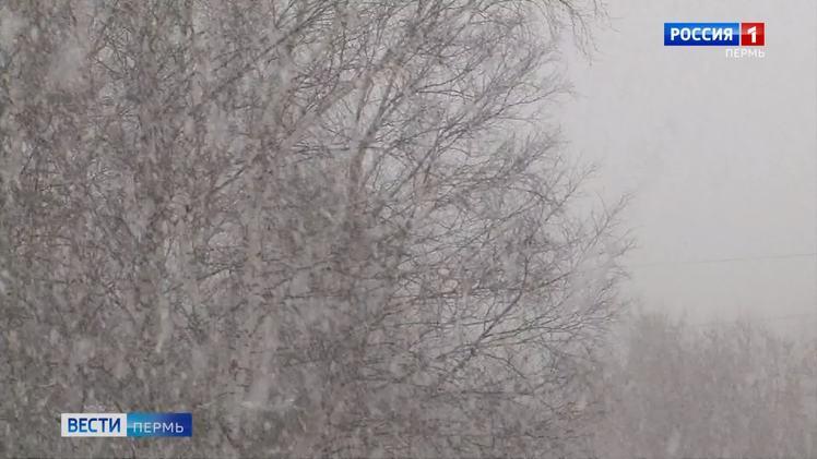 На смену морозам в край придут обильные снегопады