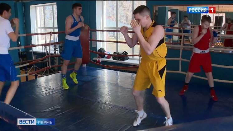 Пермь вернет статус одного из центров российского бокса
