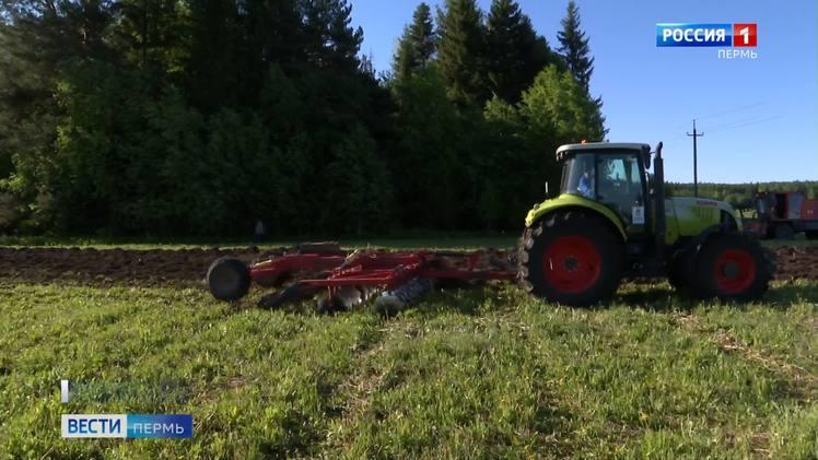В МФЦ Прикамья со 2 августа стартует прием заявок от сельхозпроизводителей на получение субсидий