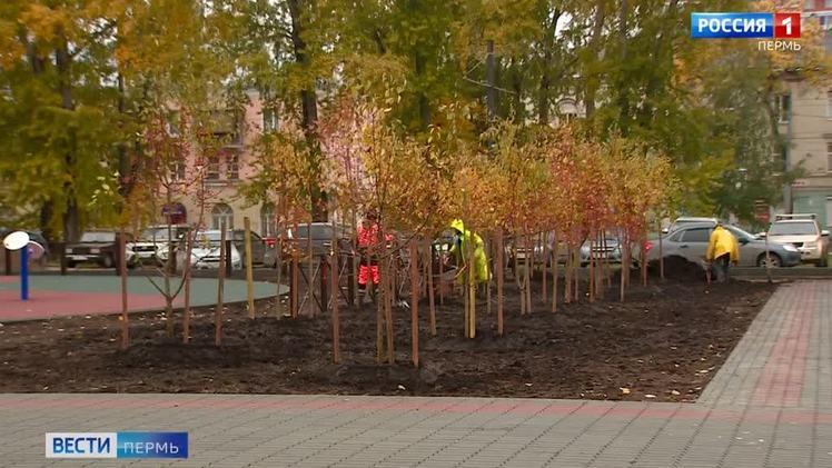 Подходят к концу благоустроительные работы в парке у ДК имени Калинина в Перми