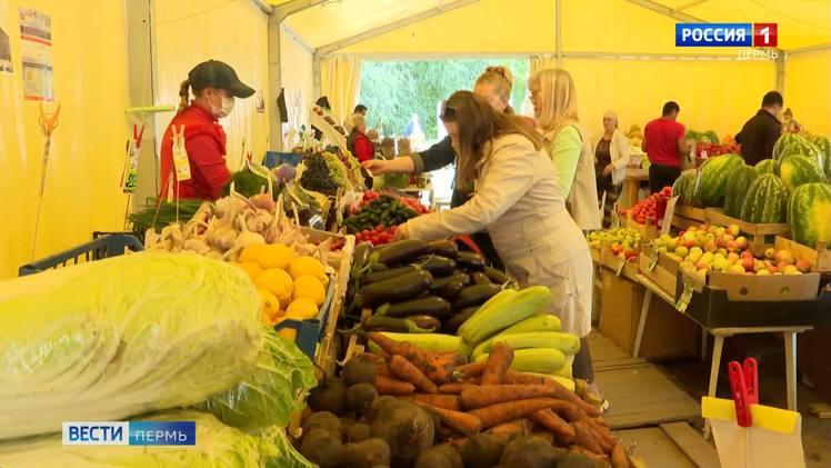 22 сентября в Мотовилихе откроется сельскохозяйственная ярмарка