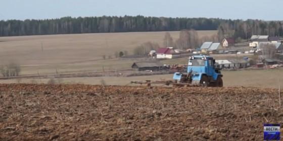 СПК «КОЛХОЗ ИМЕНИ КИРОВА» Сельхозпроизводители Прикамья в «Центре внимания»